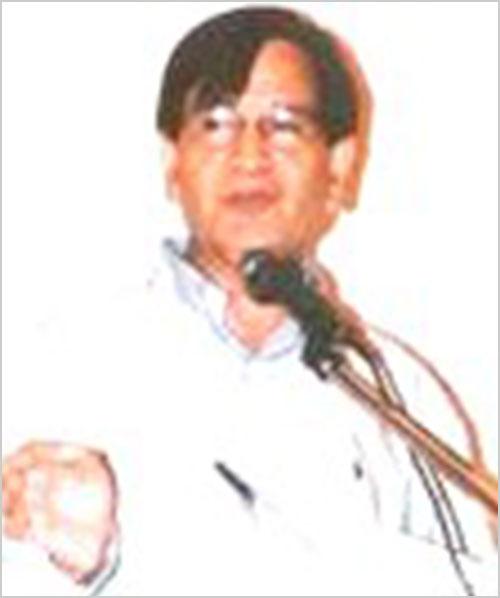 बौस्टन शाखा संयोजक श्री श्याम सुन्दर शर्मा एवं पूर्व अध्यक्ष श्री गिरीश जौहरी मंच पर